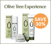 Olive Tree Experience