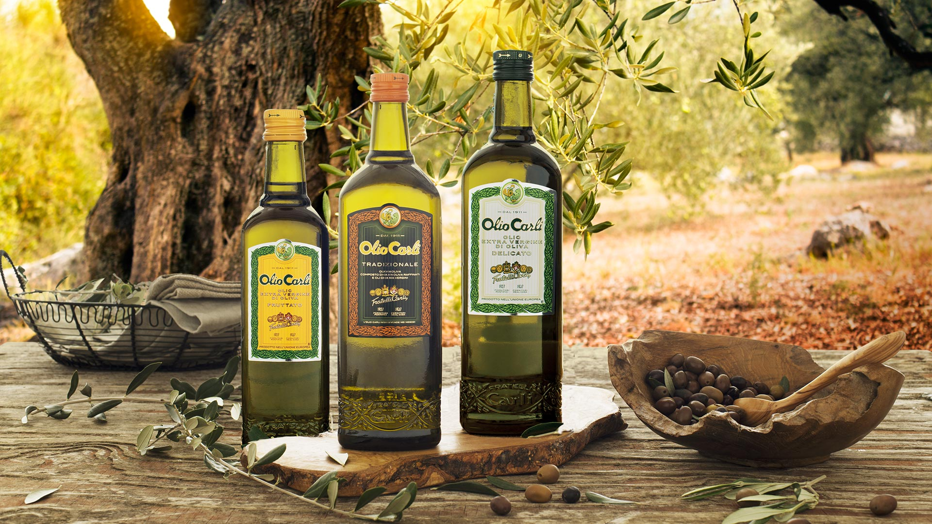 How to store olive oil – Fratelli Carli